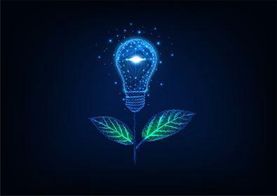 Selo Energia Verde: por que é importante ter um certificado de energia renovável?