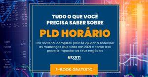 capa-e-book-pld-horario